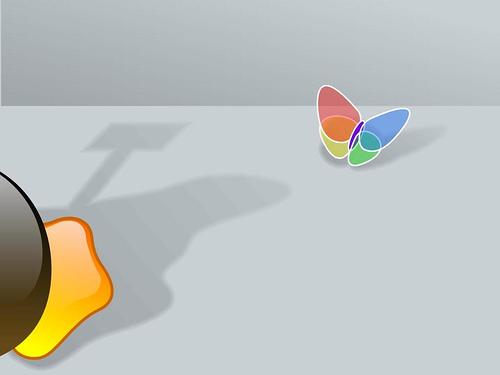 winfly.jpg